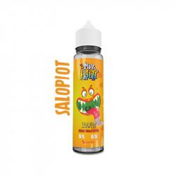 Liquideo Multi Freeze Salopiot 50ML