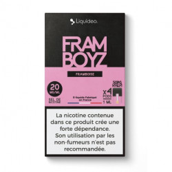 WPod Framboyz 10ML par 4 - Liquideo