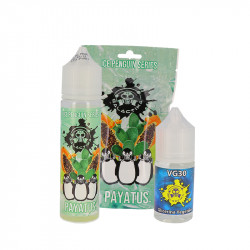 Payatus - Ice Penguin Series - Galactika