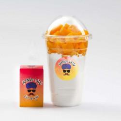 Mango Lassi TPD 10ML par 4 - Rud & Gad