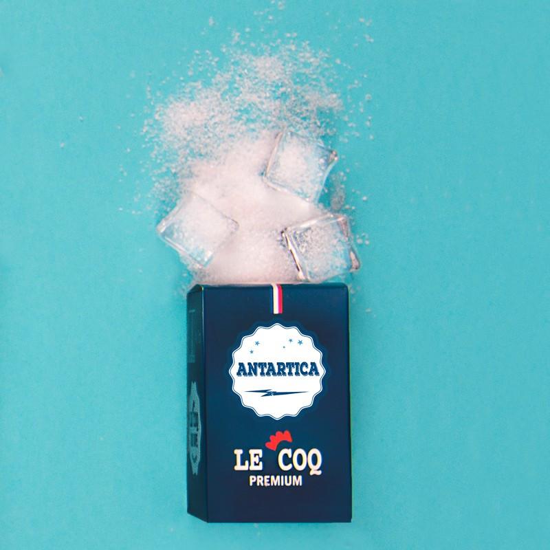 Antartica TPD 10ML par 4 - Le Coq Premium