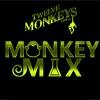 12 Monkeys Mix
